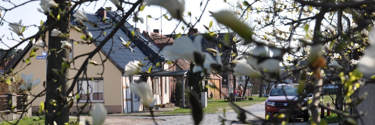 Bergstraße Frühling Pano