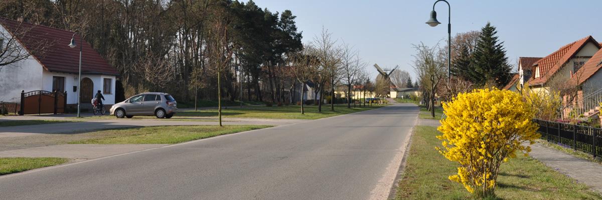 Dammstraße Frühling Pano