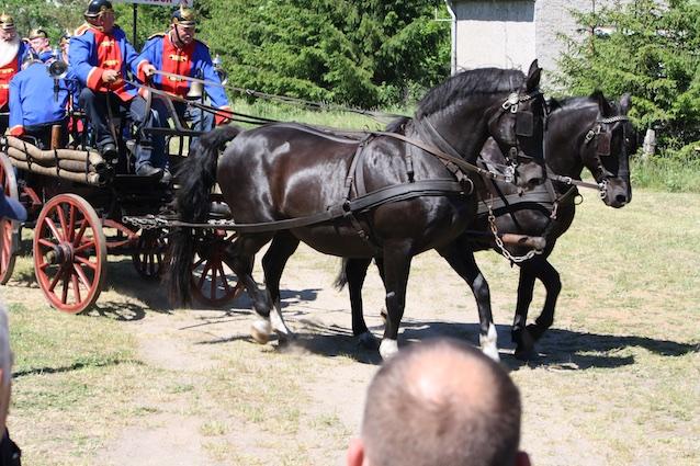 170527 Dorffest (17)