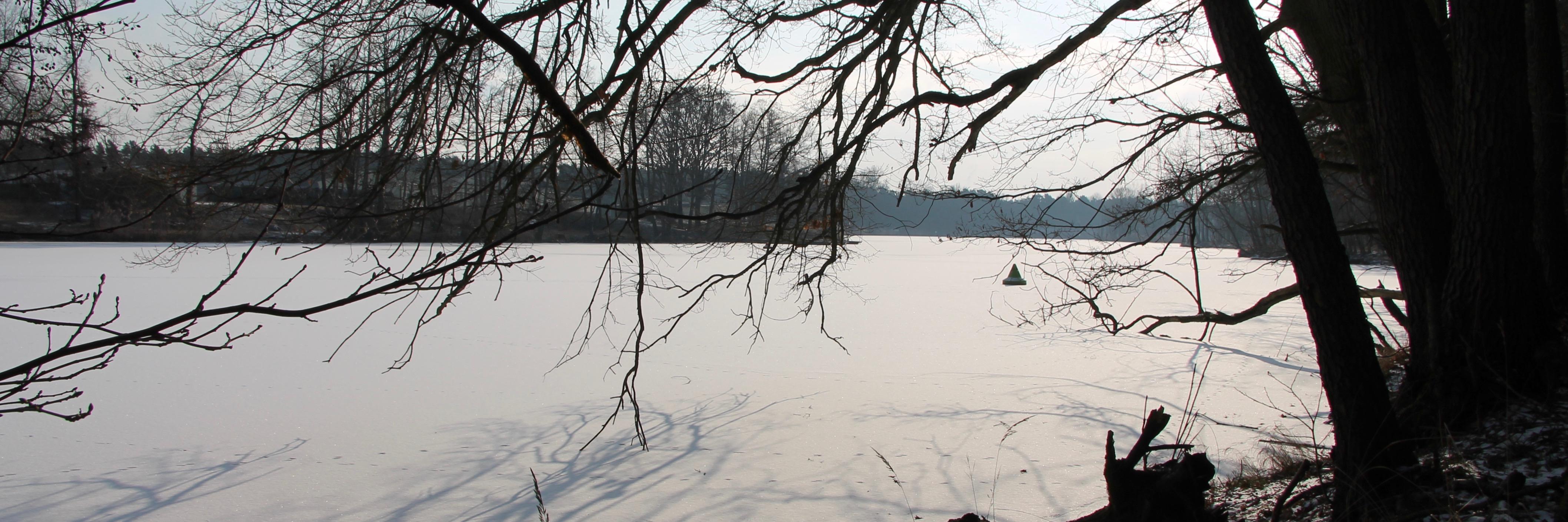 180301 Klietz Winter 19391