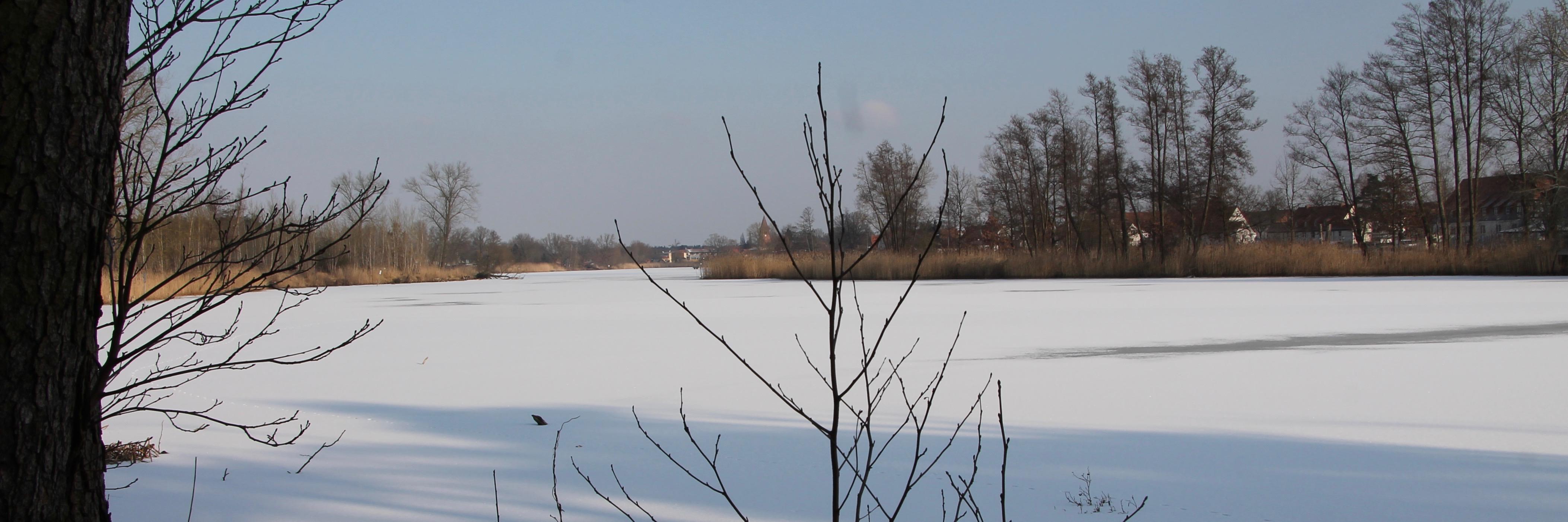 180301 Klietz Winter 19392
