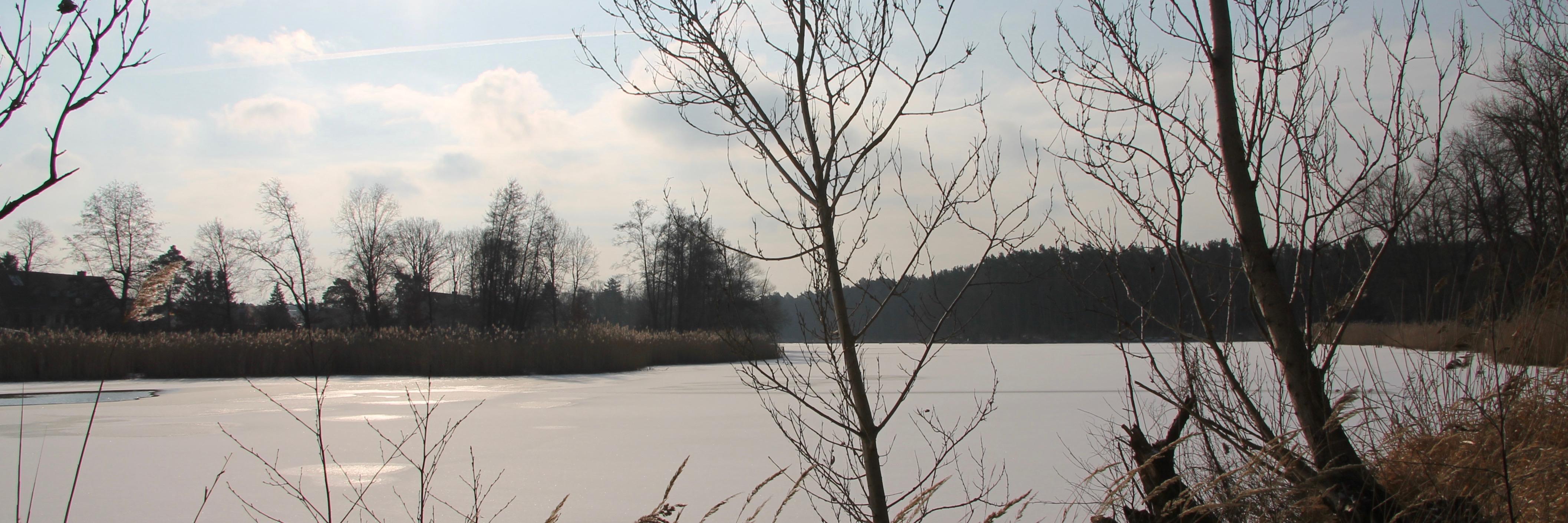 180301 Klietz Winter 19396