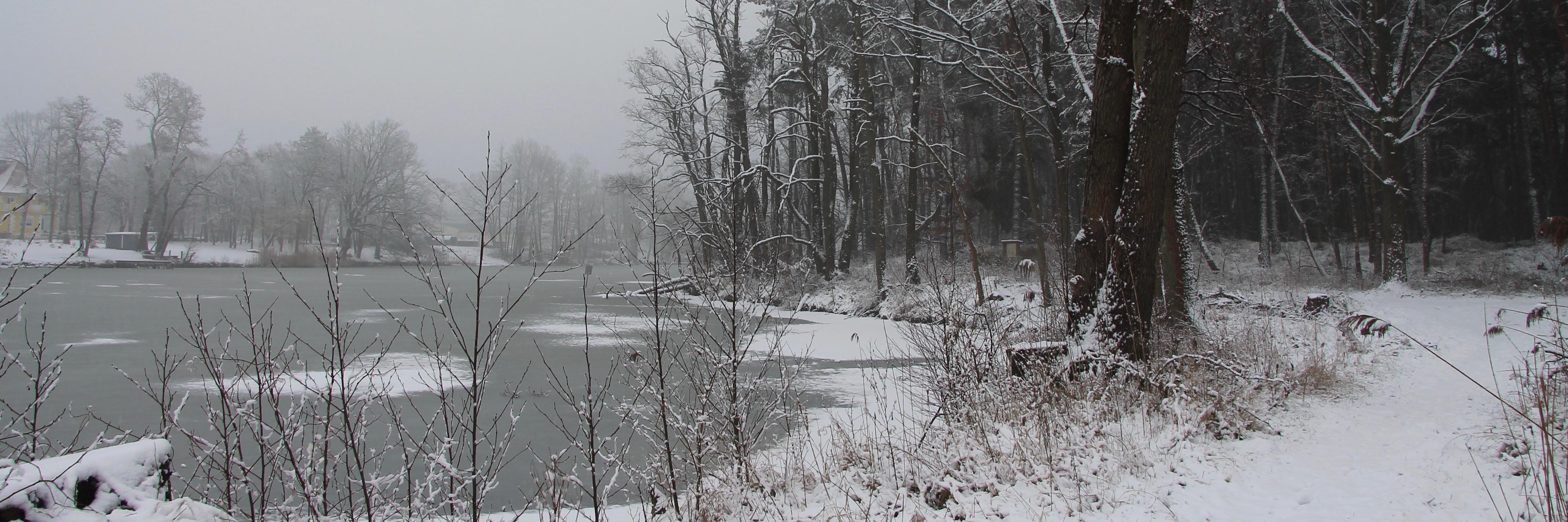 180301 Klietz Winter 19402